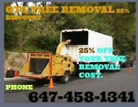 Tree service removal cutting stumping 647-458-2343
