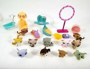 Littlest Pet Shop Accessories