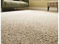 Free Carpet Clean