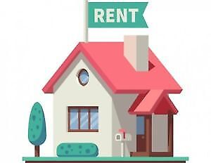 House Rental Wanted for Professionals