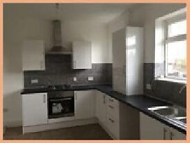 Low move in costs - Immaculate 3 bed semi-detached house to rent in Plains Farm, Sunderland