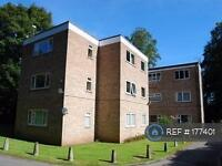 2 bedroom flat in Lichfield Road, Sutton Coldfield, B74 (2 bed)
