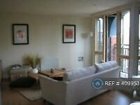 1 bedroom flat in Seller Street, Chester, CH1 (1 bed)
