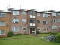Immaculate flat to rent in Simons Close