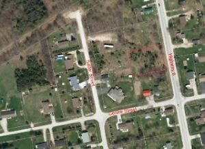 Large Lot on Salter St in Williamsford! Awaiting your Dream Home