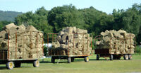 End of Season HAY SALE - Free Local Delivery available