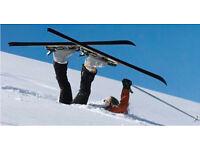 Salomon Ski's 165cms