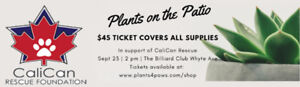 Calican Rescue   Plants on the Patio Fundraiser