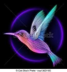 colourful_colibri