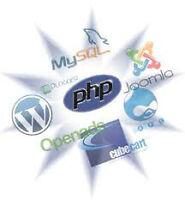 Creation des sites web, Analyste-programmeur.