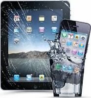 Computer Doctors Inc. Professional Quick iPad Repairs