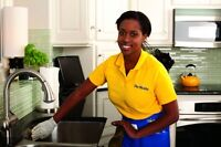 gerlicia cleaning services