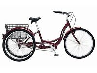 Adults Tricycle, burgandy, new, with basket.