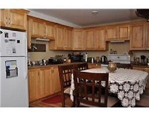 Available for June 1st - Beautiful 1 Bedroom Apt. in Paradise