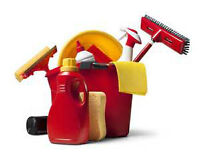 THE PURSUIT OF CLEANLINESS (Residential cleaning)
