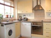 UNBELIEVABLE 2 BED 2 BATH NEW CROSS. AVAILABLE NOW!