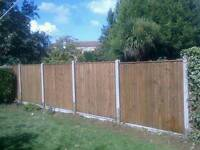 Cheap Fence painting and repirs call 07919238938 for info