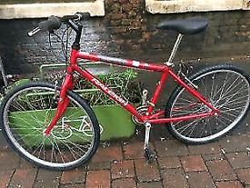 Raleigh firefly adults bike