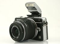 Olympus EPM2 and 14-42mm II lens
