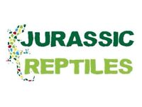 Jurassic Reptiles Now Open