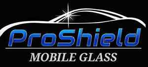 Mobile glass service!!!