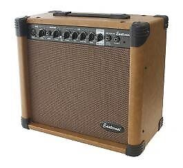 Eastcoast 40w Acoustic Guitar Amp combo with spring reverb