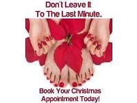 Christmas Special Dial