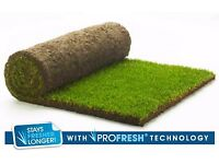 Two rolls of Rolawn 'Medallion' turf in W9