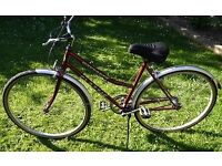 1980s British 22in (L) Single Speed Ladies Bike in Perfect Order