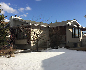 Calgary NW Rental Required