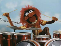 WANTED : DRUMMER FOR HIRE
