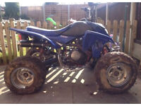 Quadzilla 250cc quad bike
