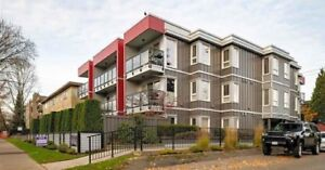 Newly renovated condo East Vancouver 1Bdr with parking