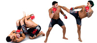 Learn MMA: Private Lessons