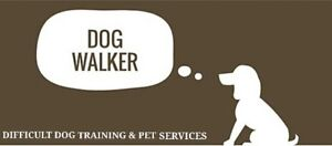 DOG WALKS & DAYCARE SPACES AVAILABLE  |  First Walk Is Free!