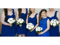 Colbolt blue bridesmaids dresses 5 altogether