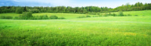 LOOKING for Vacant Land in Thunder Bay Area