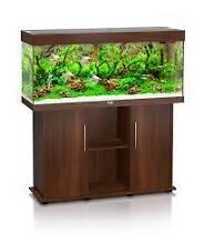 Juwel Rio Aquarium 240 Tank, Stand and Accessories Sandringham Bayside Area Preview