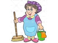 Experienced CRB/DBS checked Insured Domestic/Commercial Cleaners covering all areas of Newport.