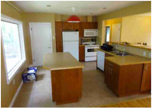 Newly Furnished Rooms 1 Block from University of Alberta & Whyte