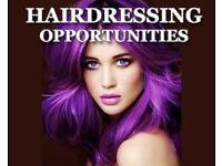 Hair Stylist / Assistant Managers / Hairdressing Apprenticeships in multi award winning salon group