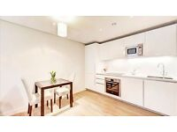 Modern 1 bedroom flat to rent in Marylebone for only £495 p/w!
