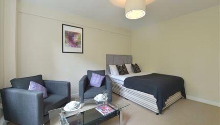 Superb studio apartment in Mayfair /W1J