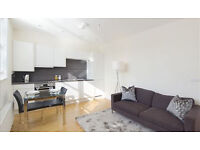 Newly refurbished two bedroom flat set in a Victorian mansion block.
