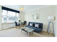 Spacious and well located studio flat in the heart of Mayfair close to parks