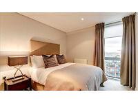 Amazing 1 Bedroom Flat in Paddington