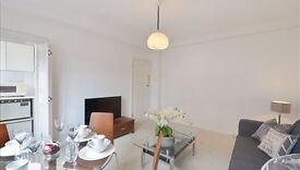 Cosy and spacious one bedroom apartment. Close to stations in the fashionable Mayfair