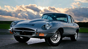 Jaguar enthusiast looking for an E-type
