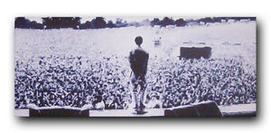 ***Oasis - Liam Gallagher - Slane Panoramic - Limited Edition Canvas***