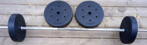 Fitness Olympic Size Weights (Buy Individually OR SET)